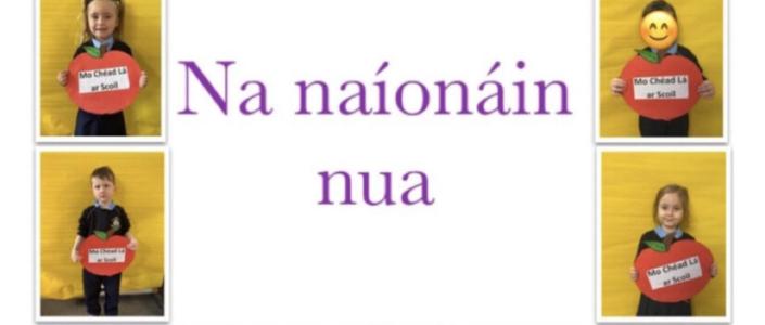 Fáilte roimh na naíonáin nua!
